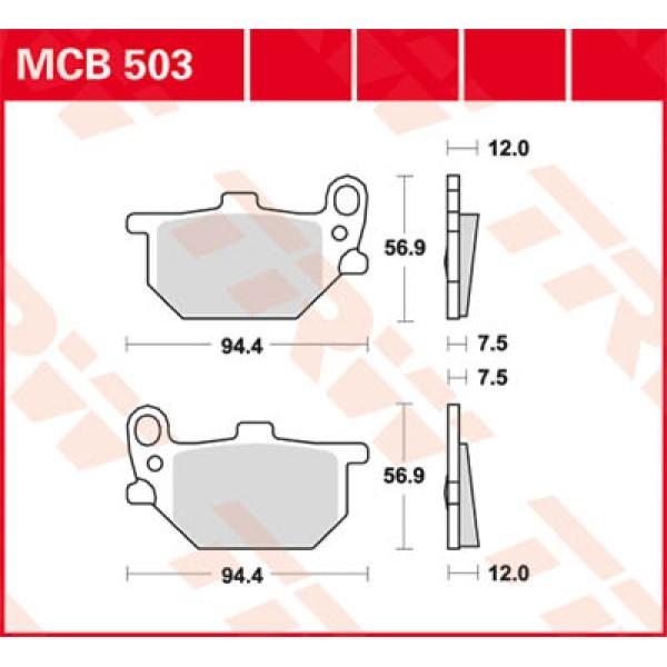 MCB 503